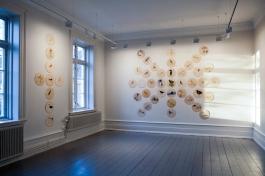 """Dokumentasjon: Vigdis Hautrø - Solsang""""Solsang"""" (2015) Fargeblyant og blyant på plate, kryssfiner og bjørk. """"Attgrod"""" (2015-18) Gran, aluminiumsfester. Foto: Vigdis Haugtrø"""